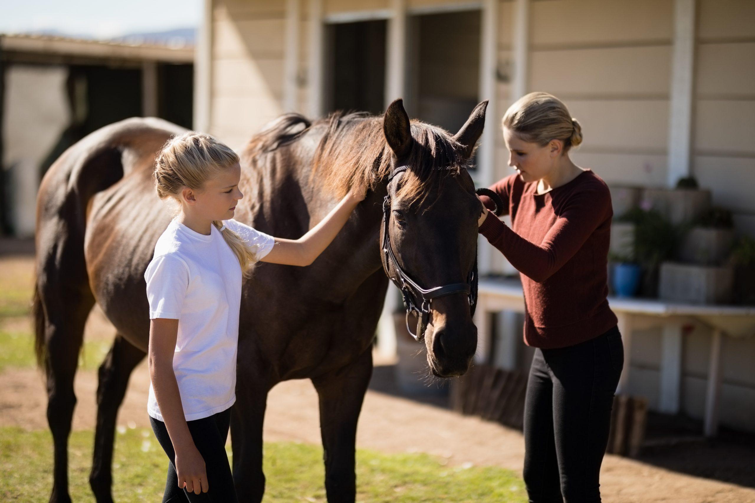 Mother's Day Gifts for your Horsey Mums