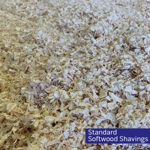Standard Softwood Shavings